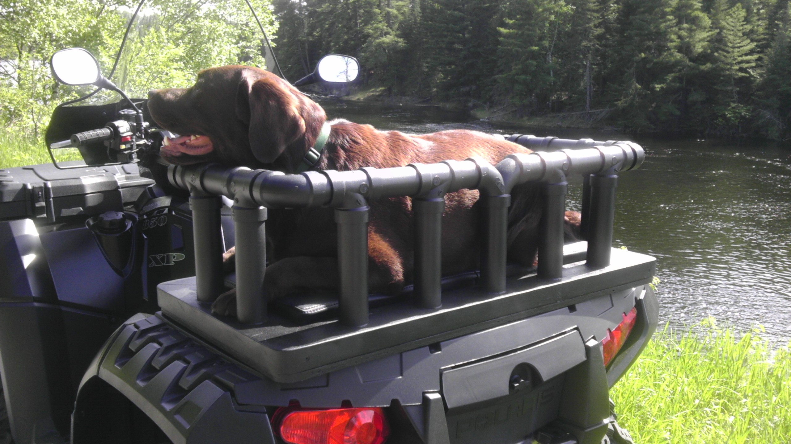 Custom Made Dog Seat Rack Polaris Atv Forum